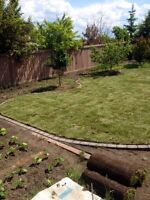 Sod and installation for $0.58 per square foot