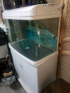 Curved Glass Fish Tank