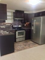 2 bedroom basement suite in millwoods for a couple