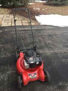 "Toro 20"" Push Mower  (20319)"