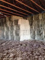 All different kinds of  Certified organic hay