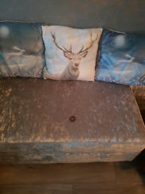 3 soft winter themed cushions.