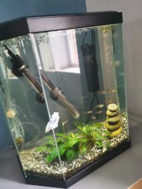 25 Litre Fish Aquarium with Fish and Heater.