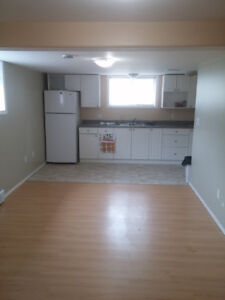 2 Bedroom 2 Bathroom Apartment in Downtown