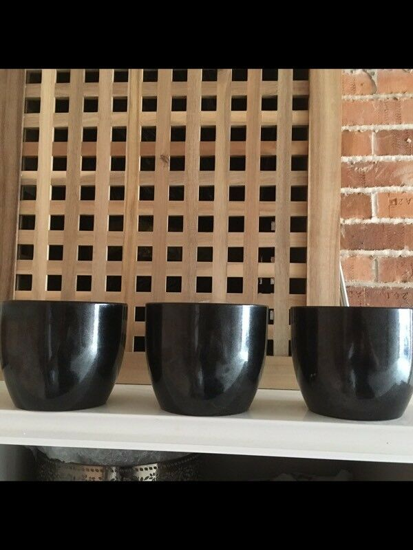 Three matching black plant pots