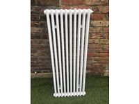 Bathroom traditional radiator