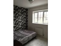 Double room in 3 bed house with garden