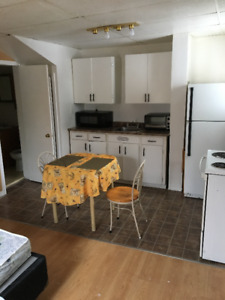 clean renovated bachelor apartment for rent.