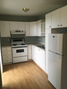 2 bedroom basement apartment in paradise RENT JUST REDUCED
