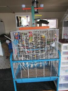Modified LARGE cage