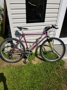 Vieux vélo de montagne Bianchi