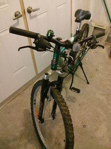 Raleigh full suspension MTB - medium frame Kitchener / Waterloo Kitchener Area image 2