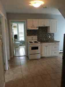 1 Bedroom apartment... Heat, water, lights and WIFI Included