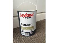 Leyland truguard masonry primer