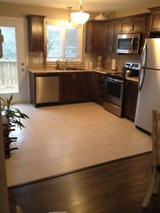 New & Quaint Full Home Rental in Paradise (2 Bedroom) $1200