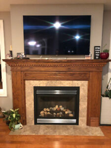Napoleon Gas Fire place