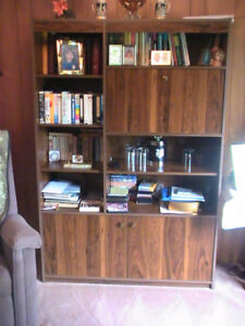 Large Wooden Bookshelf with Bar Cabinet