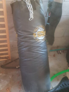 Everlast Punching Bag w/ Bag Gloves and Wall Mount