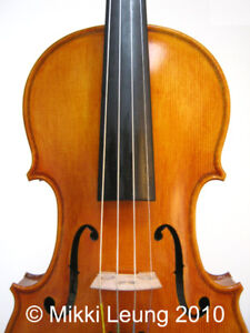 Violin Lessons in Toronto West, near Mississauga