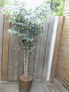 6ft Artificial TREE Fake PLANT