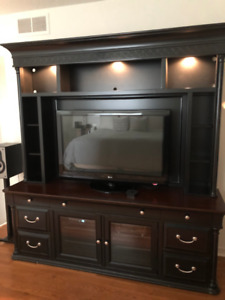 Black Entertainment Unit with Accent Lighting