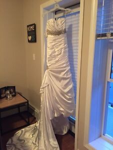 Brand new and never worn Wedding dress and Vail