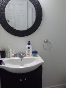 NEW FURNISHED BASEMENT CLOSE TO FOREST GLEN SHOPPING CENTRE. Kitchener / Waterloo Kitchener Area image 7