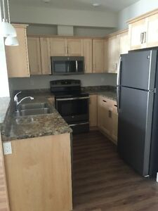 NEW 2 BDRM CONDO FOR RENT