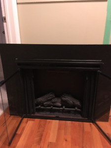 Fireplace insert by Twin Star