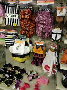 Pet Costumes  & Accessories ONLY $5