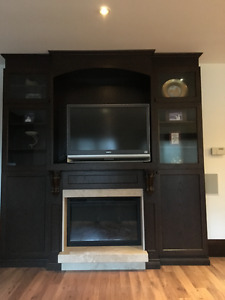 Custom Fireplace/Entertainment Unit/Cabinetry