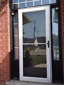 Storm door with mesh
