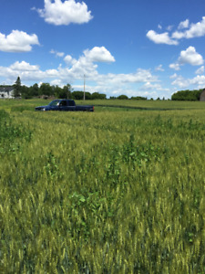 Looking to lease farm land