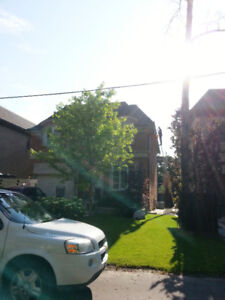 Roof, siding  and Eavestrough repair