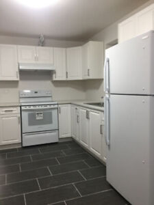 2 BR suite in Cloverdale/new house/laundry/flat top range/stone