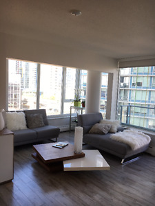 Modern Spacious Fully Furnished 1-BR Apartment