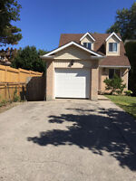 BASEMENT FOR RENT - Close to Stone Road Mall!