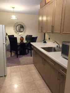 Spacious first floor 1 Bedroom Apartment with large patio