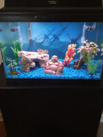 20-25 gallon fishtank and extras for trade