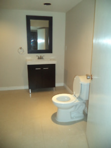 Spacious Ground Level Walk Out  Basement Apartment