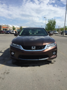 2014 Honda Accord Coupe - Rare Color