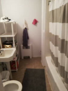 FEMALE ROOMMATE WANTED: 4 + 1/2 Apartment Downtown by Concordia
