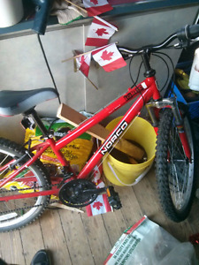 Norco Ignitor Teen Bike (Red)