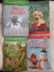 *Like New* Three Chapter Books