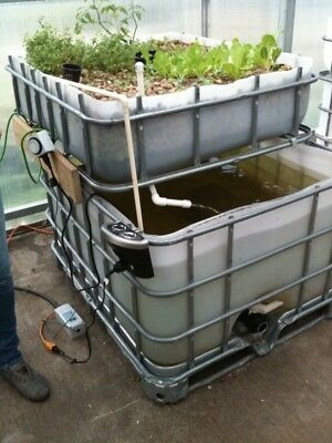 Large Aquaponic System with 200 gallon fish tank. 48x40 grow bed.