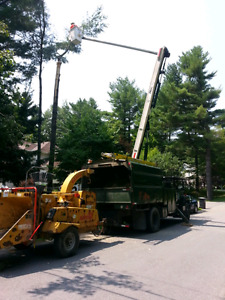 Forestry bucket chipper dump truck with chipper