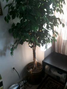 DECORATION ARTIFICIAL PLANT