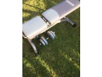 York bench with dumbbells adjustable .will sell separate ,