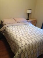 Sears- Orpedic double bed set
