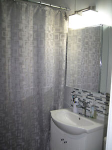 Sunny two bedroom St. Boniface condo with two parking stalls